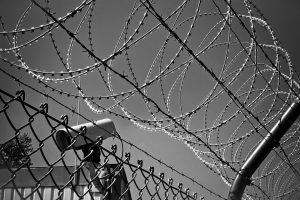 abstract-barbed-wire-black-white-274886