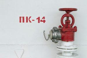aleksey-shkitenkov-722271-unsplash